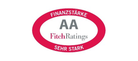 fitch-rating-erv